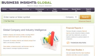 Business Insights Global