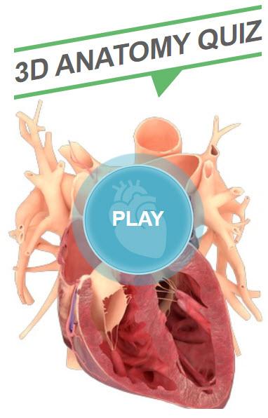 3D Anatomy Quiz graphic